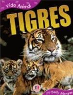 Tigres Colecao Vida Animal