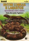 Entre Cobras e Lagartos: Aprendendo Sobre Répteis