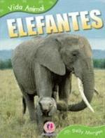 Elefantes - Vida Animal